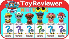TY Mini Beanie Boo's Paw Patrol Collectible Hand Painted Blind Unboxing Toy Review by TheToyReviewer
