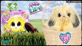 Little Live Scruff a Luvs Limited Edition Blossom Bunnies