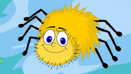 Incy Wincy Spider - Yellow Spider