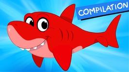 My Pet Shark - Morphle compilation -Episode - 29