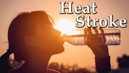 Heat Stroke And Sun Stroke - Ayurvedic Home Remedies for Heat Stroke - Sun Stroke Treatment at Home