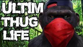 Thug Life - Animals Being Jerks - 6