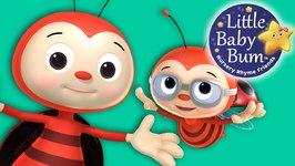 Little Baby Bum - Ladybug Ladybug - Nursery Rhymes for Babies - Songs for Kids