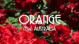 ORANGE Documentary