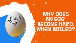 Interesting Food Facts - Why Does An Egg Become Hard When Boiled