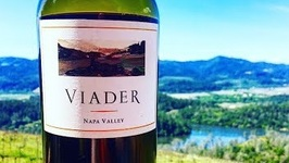 Winemaker Delia Viader Dares To Do Things Differently For 3 Decades