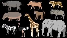 Savanna Animals - Book Version