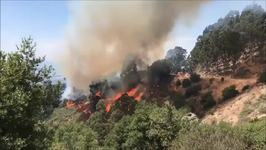 Wildfire Burning Near UC Berkeley Partially Contained