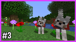My New Dogs! - Ep 103