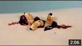 Maggots In Sore