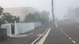 Winter Fog Blankets Brisbane
