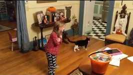 Cutest Girl in the World Adopts Beloved Cat