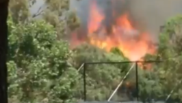 Grassfire in Southeast Melbourne Burns Through Park and Cemetery