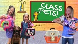 Toy School Gets a Class Pet