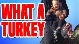What A Turkey - Funniest Turkey Compilation
