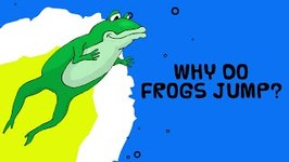 Crazy Frog - Interesting Scientific Facts About Animals - Why Do Frogs Jump