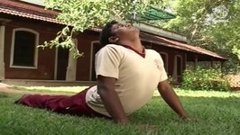 Yoga Exercise for Beginners - Bhujangasana - Cobra Pose - Improves Blood Circulation