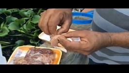 Bettas - Preparation frozen liver