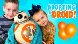 We Are Adopting Bb-8 Star Wars Hero Droid Bb-8 By Spinmaster