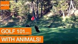 Golf 101... With Animals.