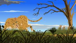 Leopard Elixir -Ep 108