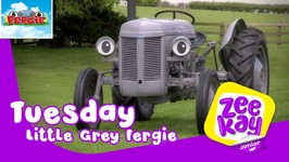 Tuesday With Fergie - Little Grey Fergie
