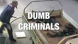 Criminals Found Guilty... of Being Dumb