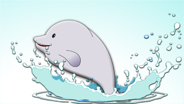 Baby Beluga  Popular Children's Song