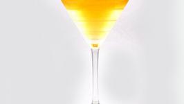 The Polish Martini