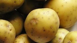chilli potatoes