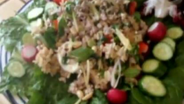 Thai Chicken Salad With Crispy Rice. Healthy Chicken Salad