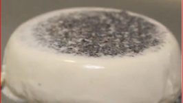 Panna Cotta with Black Sesame Seeds