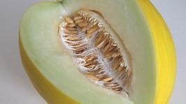 Gingered Honeydew Melon