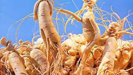 How To Make Ginseng Extract At Home