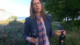 Wine Video 23 - Red Wine with Steak, But Will Any Red Do?