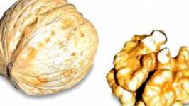 Side Effects Of Walnut