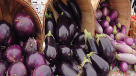 Seasons- Eggplant