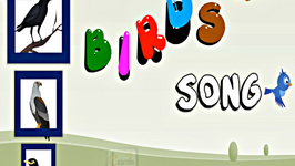 The Birds Alphabet Song  Birds abc Song  ABC Alphabet Song for Children