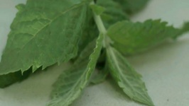 How To Make Fresh Mint Mojitos