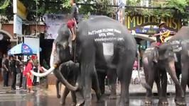 Bangkok Thailand, Dancing Elephant Parade