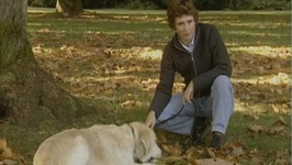 Pet Friends Series 2, PF201 - Lure Coursing Sport