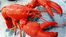 How Was Lobster Promoted To Cousin Of Caviar From The Cockroach Of Sea