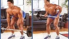 Bent Over Row : The most Underrated Back Exercise