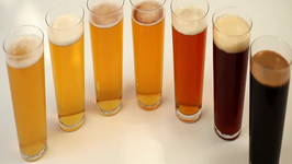 Beer 101 A Style Guide
