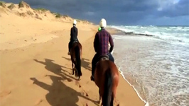 Gunnamatta Trail Rides, Beach Rides Mornington Peninsula Victoria
