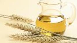 Wheat Germ Oil Benefits