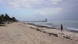 Top Things to See in Playa del Carmen, Mexico