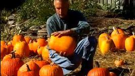 Virginia Farm Bureau- In the Garden- Picking a Pumpkin