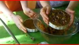 Jana and Chloe Make a Raw Carrot Cake