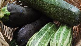 Seasons- Zucchini